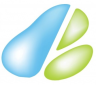 Pear Technology Favicon